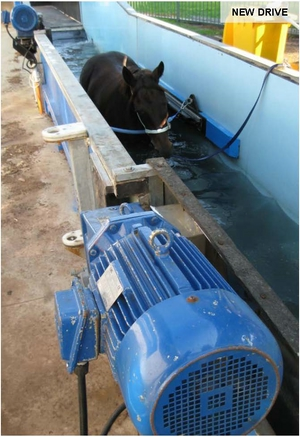 Poly Chain On Under Water Horse Treadmill Gates Australia