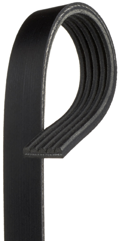 Micro v Stretch Fit Belts